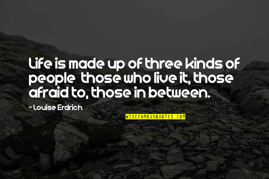Life Live It Up Quotes By Louise Erdrich: Life is made up of three kinds of