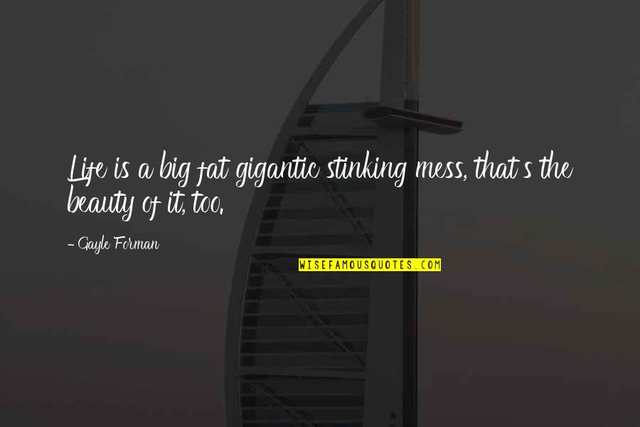 Life Love And Family Quotes By Gayle Forman: Life is a big fat gigantic stinking mess,