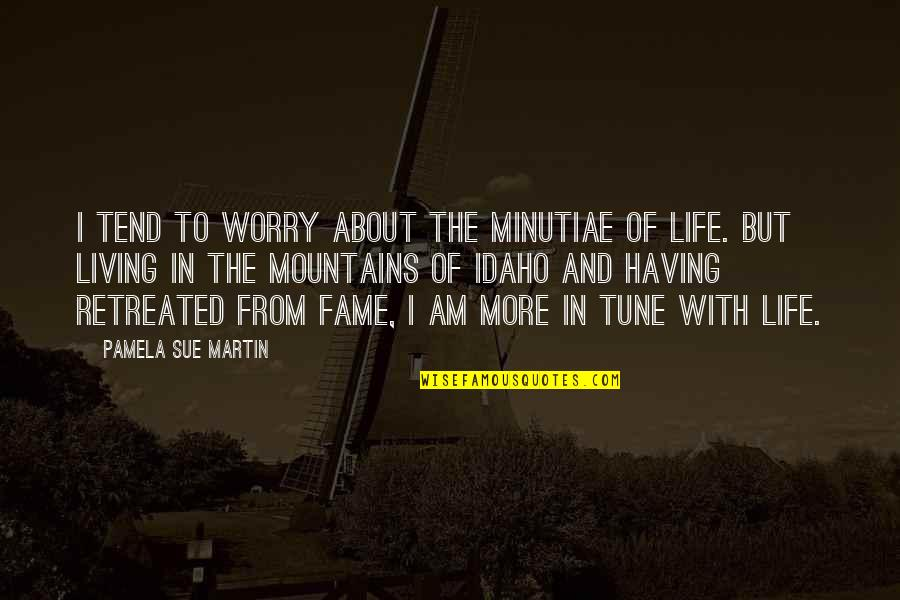 Life Mountains Quotes By Pamela Sue Martin: I tend to worry about the minutiae of