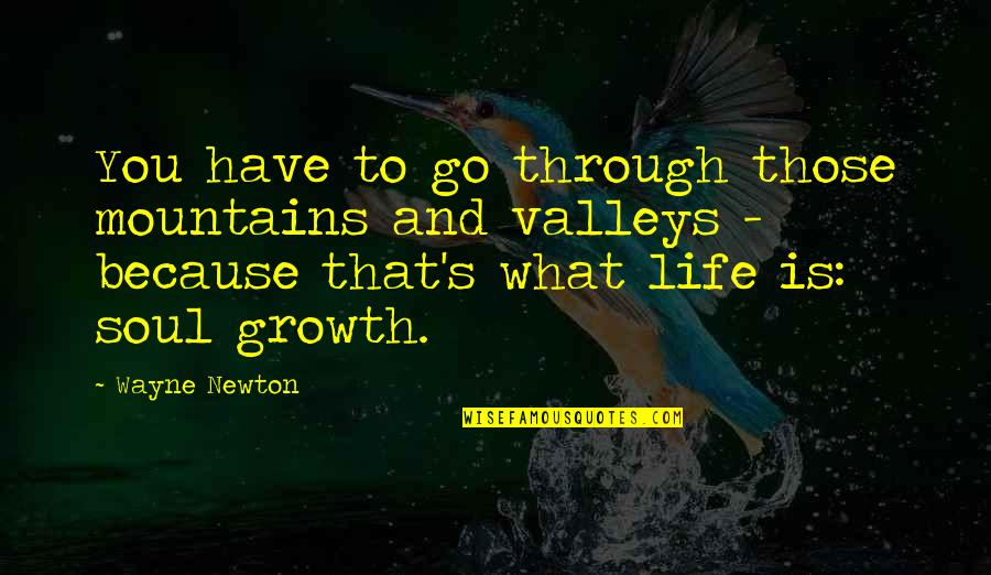 Life Mountains Quotes By Wayne Newton: You have to go through those mountains and
