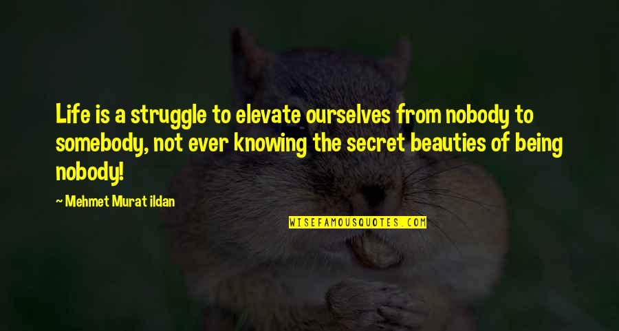Life Of Struggle Quotes By Mehmet Murat Ildan: Life is a struggle to elevate ourselves from