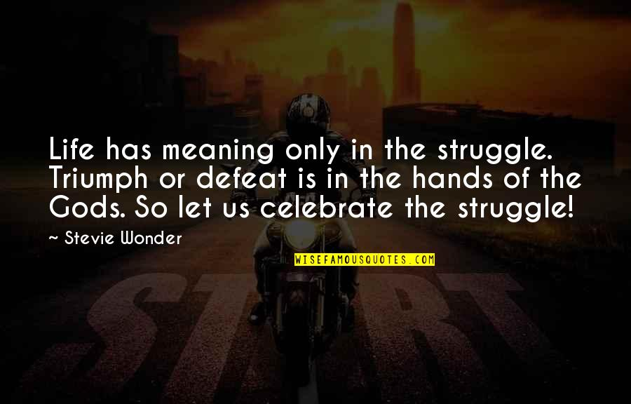 Life Of Struggle Quotes By Stevie Wonder: Life has meaning only in the struggle. Triumph