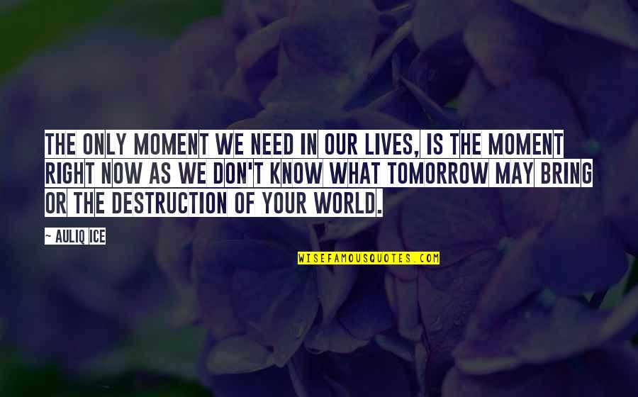 Life Of Success Quotes By Auliq Ice: The only moment we need in our lives,