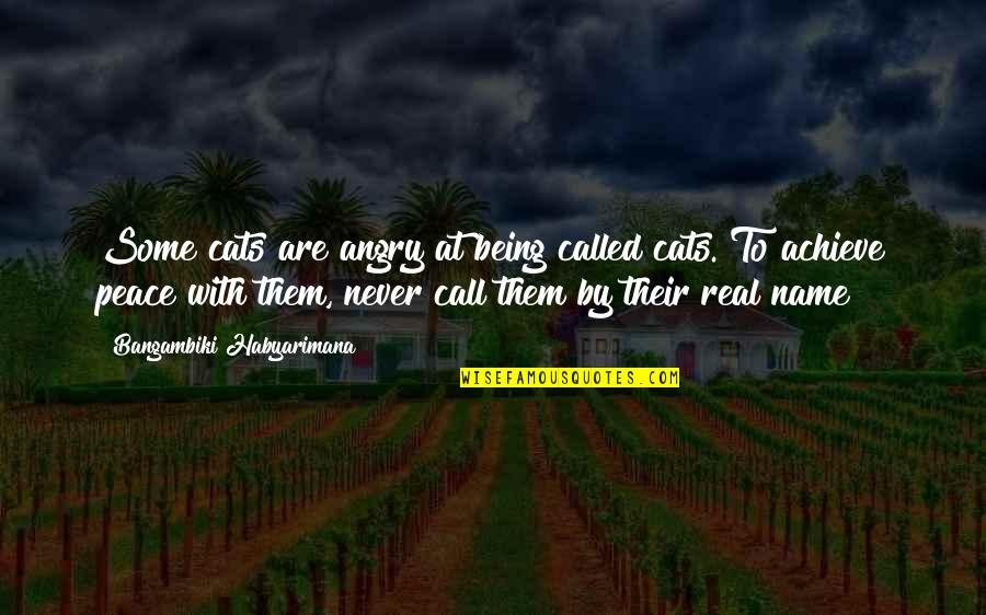 Life Proverbs Quotes By Bangambiki Habyarimana: Some cats are angry at being called cats.