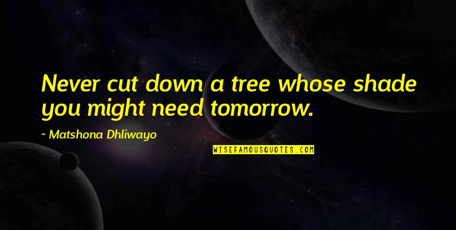 Life Quotations Quotes By Matshona Dhliwayo: Never cut down a tree whose shade you
