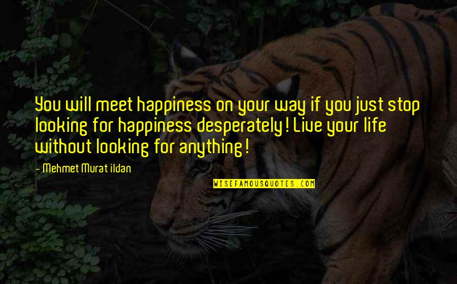 Life Quotations Quotes By Mehmet Murat Ildan: You will meet happiness on your way if