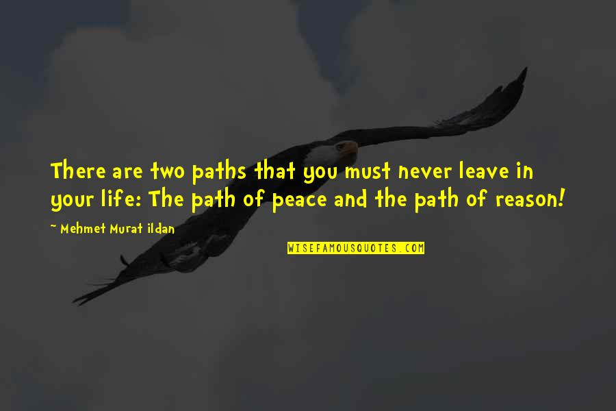 Life Quotations Quotes By Mehmet Murat Ildan: There are two paths that you must never