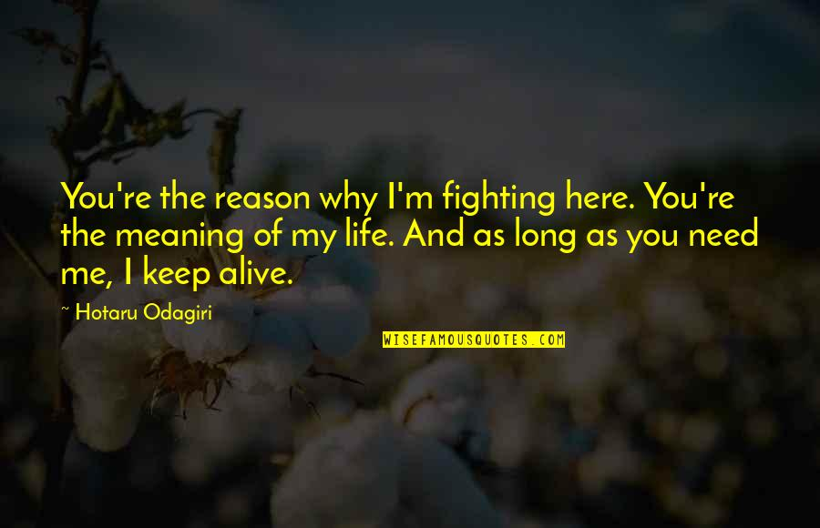 Life Re-evaluation Quotes By Hotaru Odagiri: You're the reason why I'm fighting here. You're