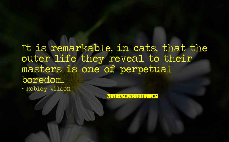 Life Reveal Quotes By Robley Wilson: It is remarkable, in cats, that the outer