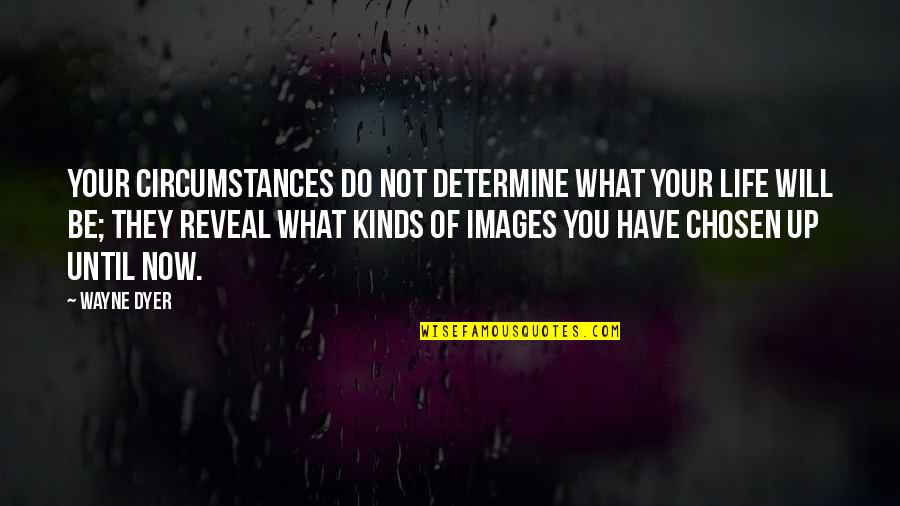 Life Reveal Quotes By Wayne Dyer: Your circumstances do not determine what your life