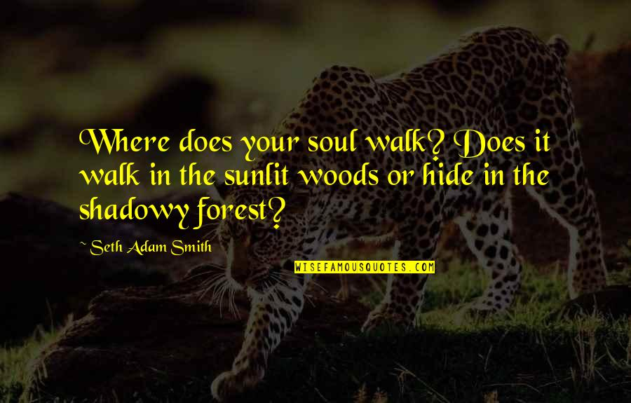 Life Searching Quotes By Seth Adam Smith: Where does your soul walk? Does it walk