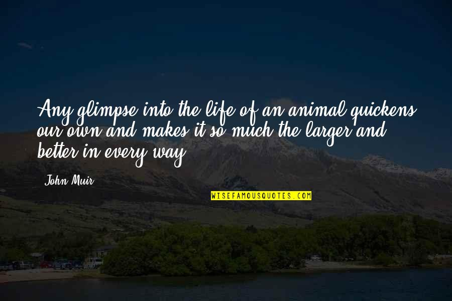 Life So Much Better Quotes By John Muir: Any glimpse into the life of an animal