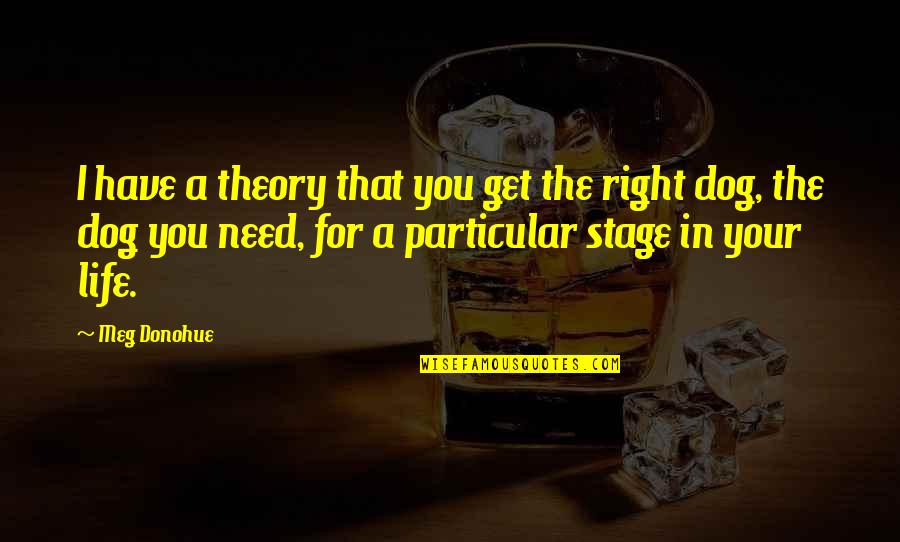 Life Stage Quotes By Meg Donohue: I have a theory that you get the