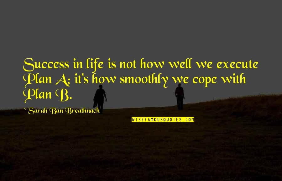 Life Success Quotes By Sarah Ban Breathnach: Success in life is not how well we