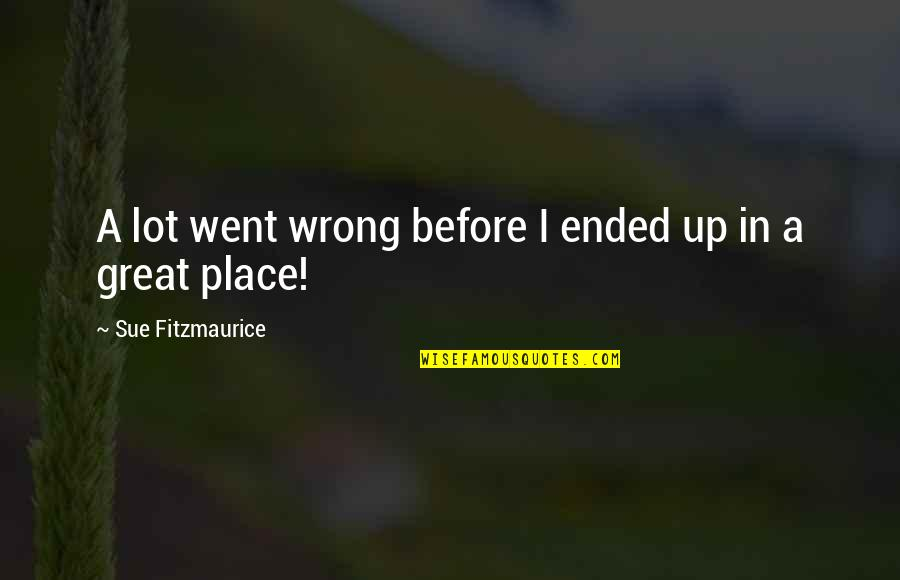 Life Went Wrong Quotes By Sue Fitzmaurice: A lot went wrong before I ended up