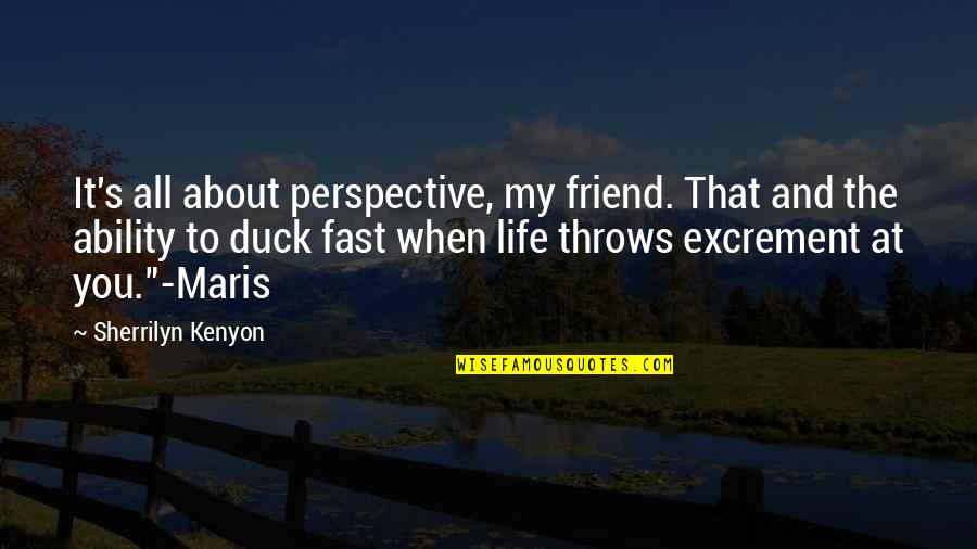 Life's All About Quotes By Sherrilyn Kenyon: It's all about perspective, my friend. That and