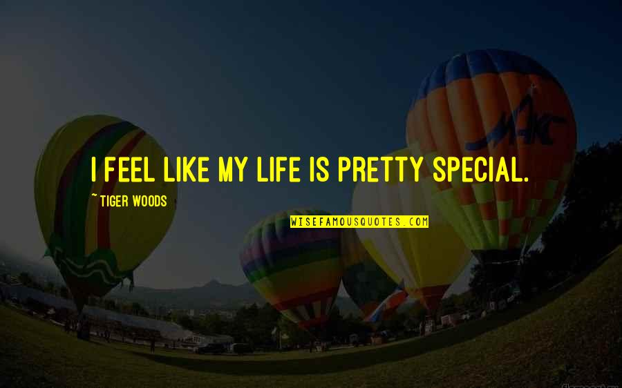 Light Brown Eye Quotes By Tiger Woods: I feel like my life is pretty special.