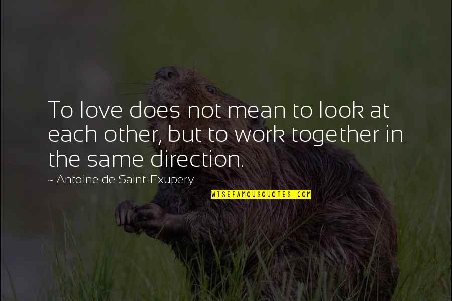 Light Hearted Picture Quotes By Antoine De Saint-Exupery: To love does not mean to look at