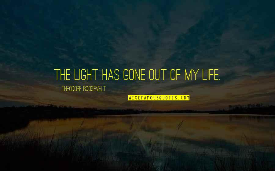 Light Up Your Life Quotes By Theodore Roosevelt: The light has gone out of my life.