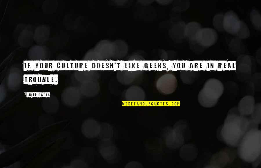 Like If You Quotes By Bill Gates: If your culture doesn't like geeks, you are