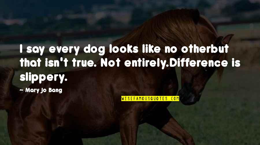 Like No Other Quotes By Mary Jo Bang: I say every dog looks like no otherbut