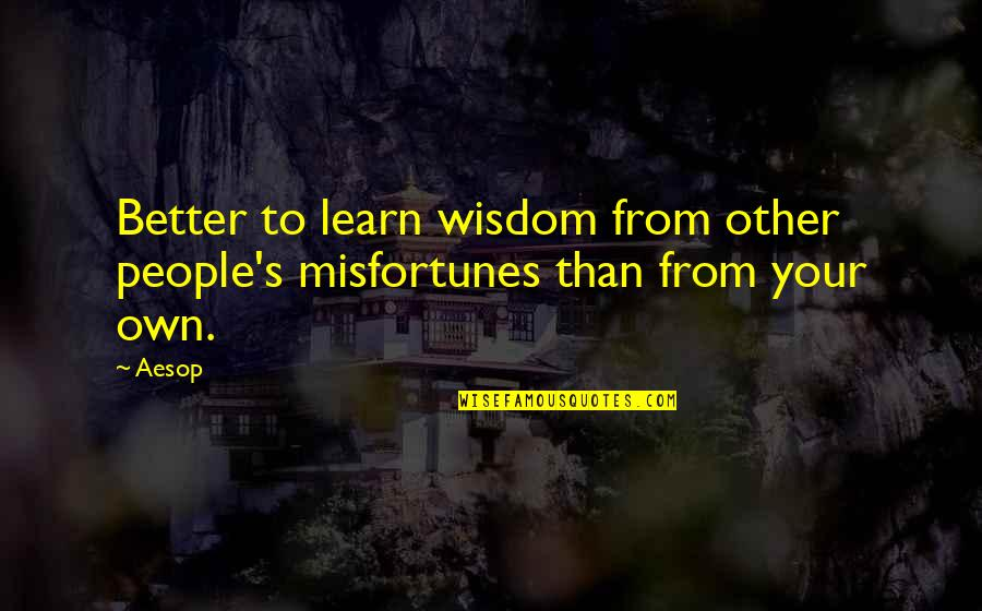 Liking Someone Who Hurt You Quotes By Aesop: Better to learn wisdom from other people's misfortunes