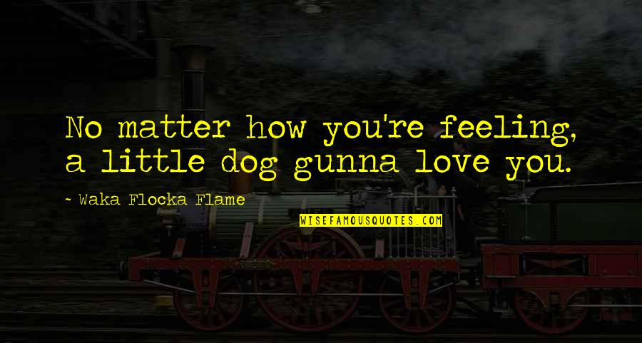 Lil Reese Rap Quotes By Waka Flocka Flame: No matter how you're feeling, a little dog