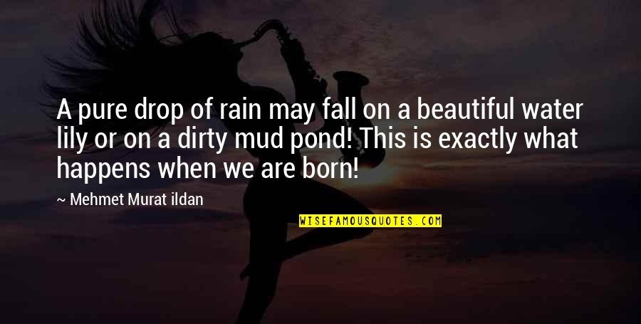 Lily Pond Quotes By Mehmet Murat Ildan: A pure drop of rain may fall on