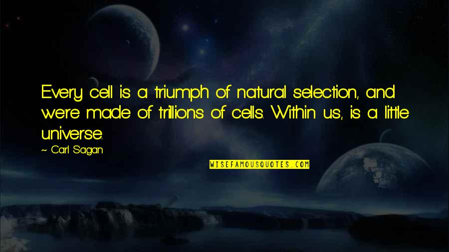Lisa Milroy Quotes By Carl Sagan: Every cell is a triumph of natural selection,
