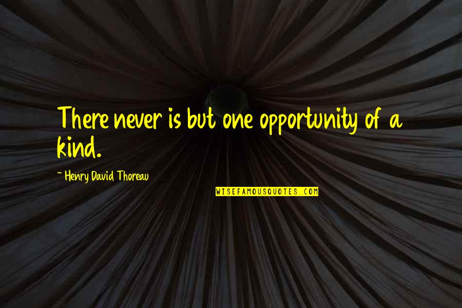 List Of Cool Quotes By Henry David Thoreau: There never is but one opportunity of a