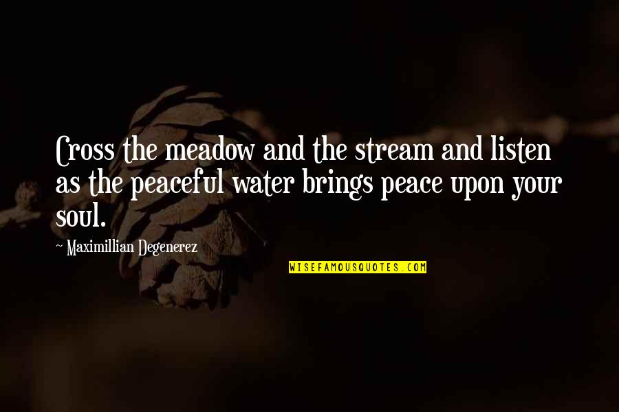 Listen To Your Soul Quotes By Maximillian Degenerez: Cross the meadow and the stream and listen