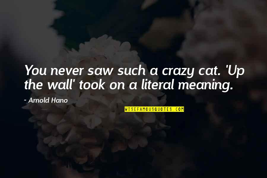 Literal Quotes By Arnold Hano: You never saw such a crazy cat. 'Up
