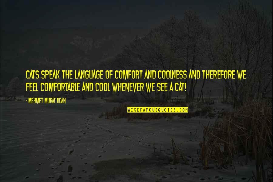 Literature And Language Quotes By Mehmet Murat Ildan: Cats speak the language of comfort and coolness