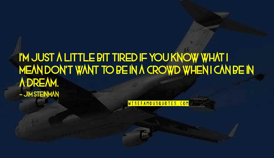 Little Bit Sad Quotes By Jim Steinman: I'm just a little bit tired If you