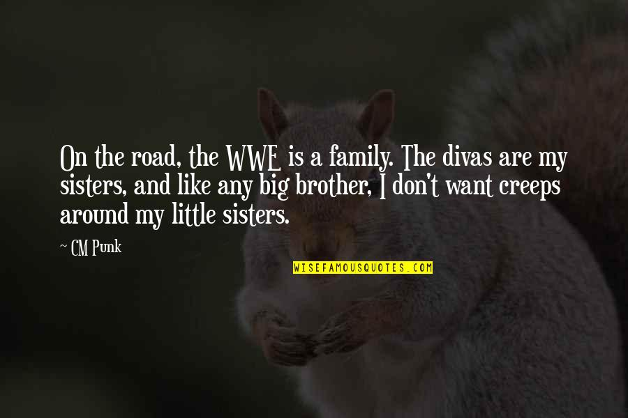 Little Brother And Sister Quotes By CM Punk: On the road, the WWE is a family.