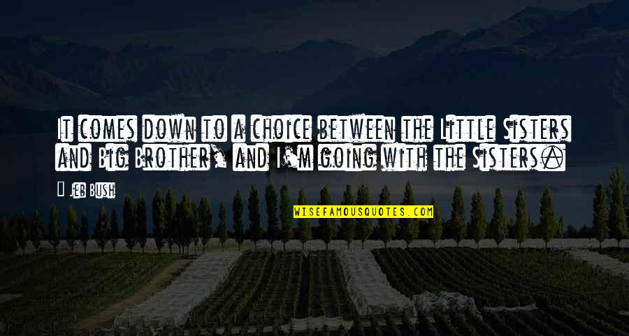 Little Brother And Sister Quotes By Jeb Bush: It comes down to a choice between the