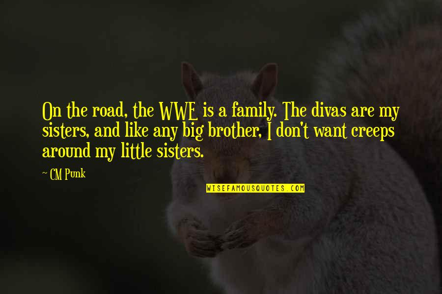 Little Brother Quotes By CM Punk: On the road, the WWE is a family.