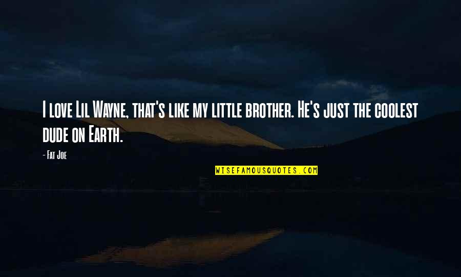Little Brother Quotes By Fat Joe: I love Lil Wayne, that's like my little