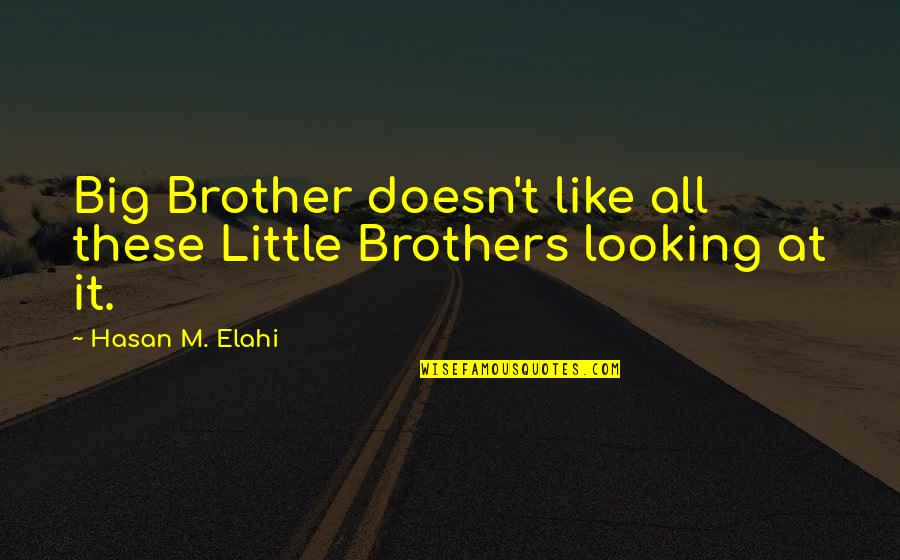 Little Brother Quotes By Hasan M. Elahi: Big Brother doesn't like all these Little Brothers