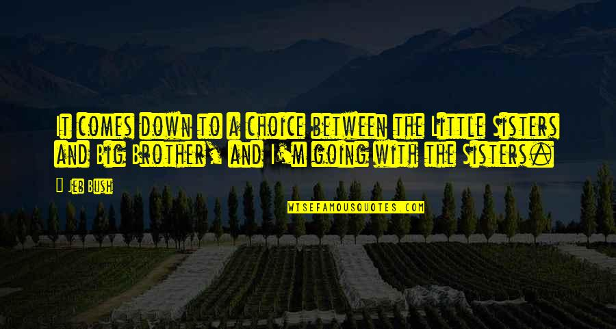 Little Brother Quotes By Jeb Bush: It comes down to a choice between the
