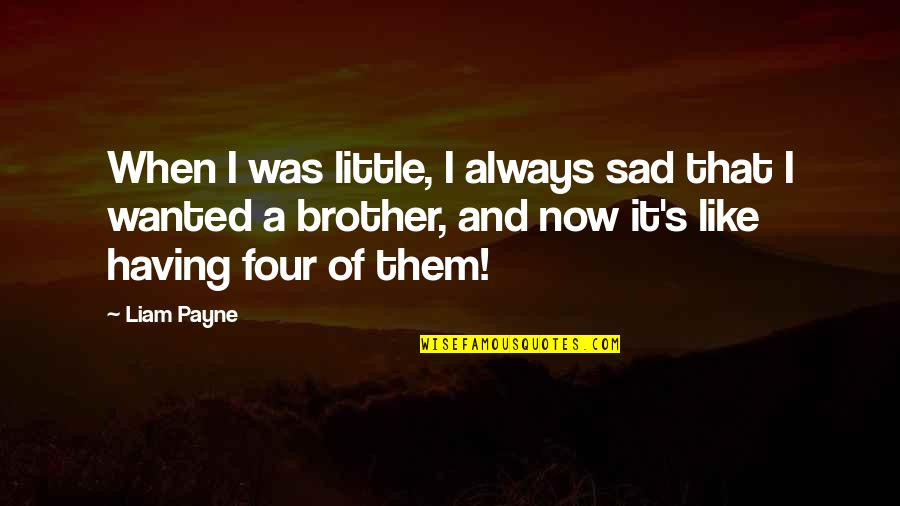 Little Brother Quotes By Liam Payne: When I was little, I always sad that