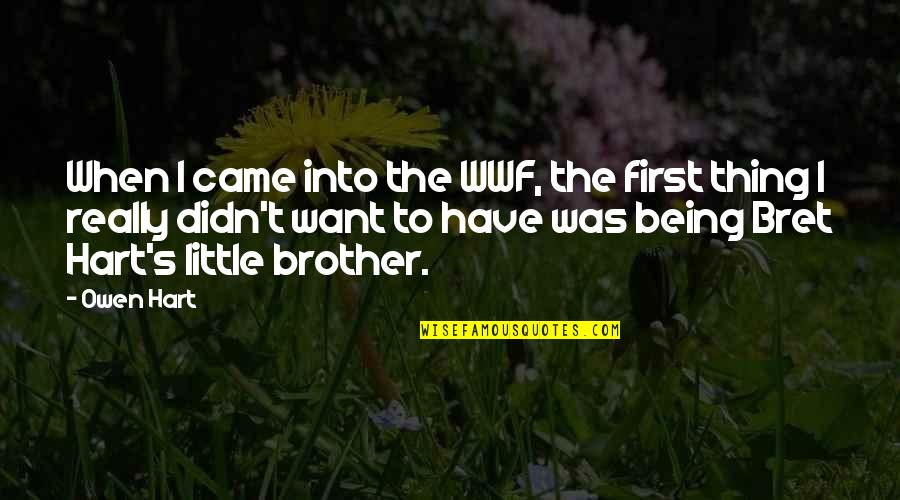 Little Brother Quotes By Owen Hart: When I came into the WWF, the first
