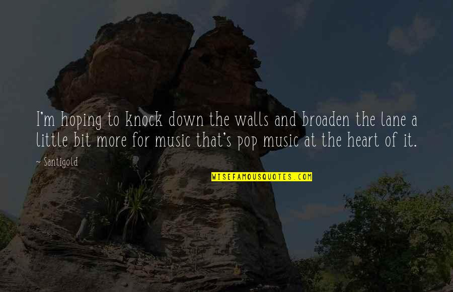 Little Music Quotes By Santigold: I'm hoping to knock down the walls and