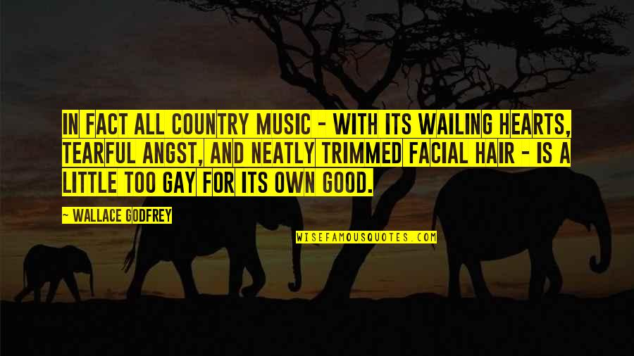 Little Music Quotes By Wallace Godfrey: In fact all country music - with its