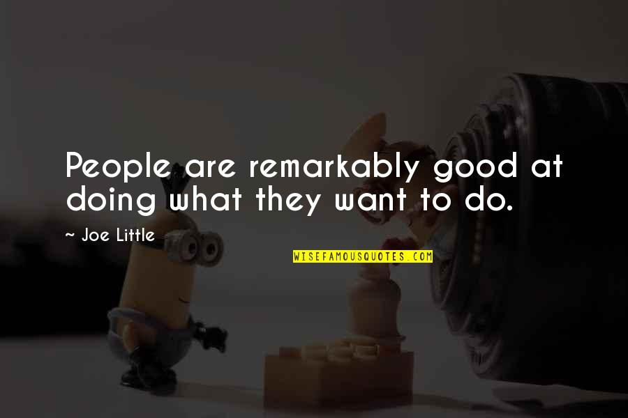 Little People Quotes By Joe Little: People are remarkably good at doing what they