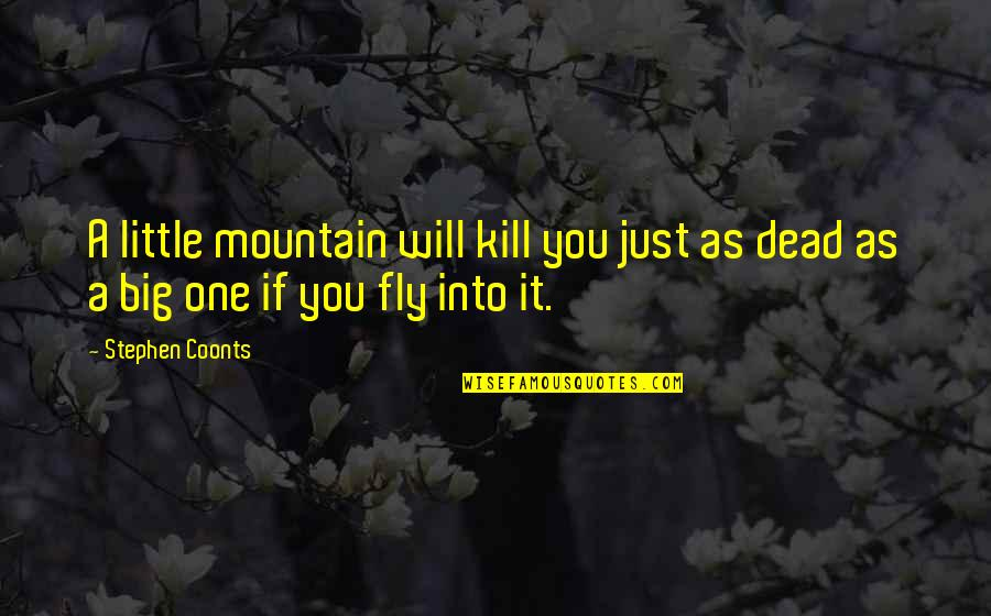 Little Vs Big Quotes By Stephen Coonts: A little mountain will kill you just as