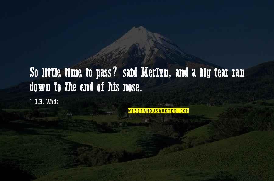 Little Vs Big Quotes By T.H. White: So little time to pass? said Merlyn, and