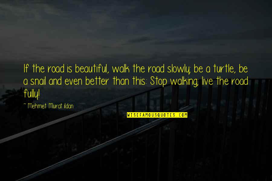 Live Fully Quotes By Mehmet Murat Ildan: If the road is beautiful, walk the road