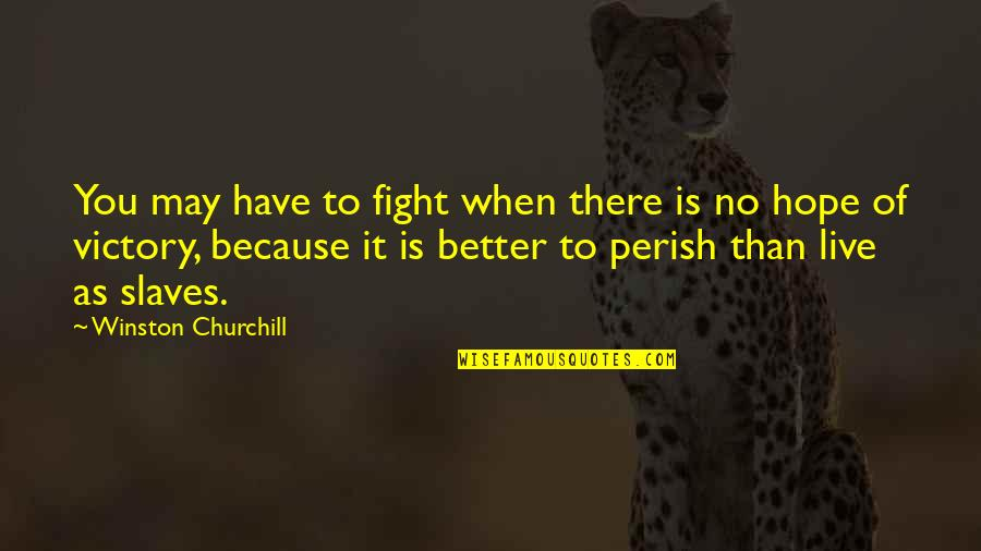Live To Fight Quotes By Winston Churchill: You may have to fight when there is