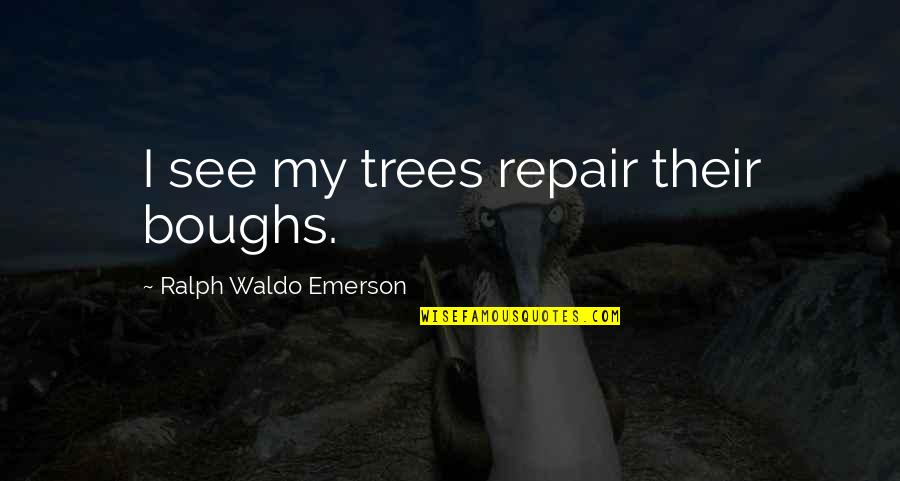 Liverpool Fc Brendan Rodgers Quotes By Ralph Waldo Emerson: I see my trees repair their boughs.